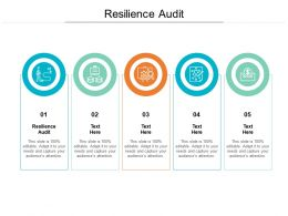 Resilience Audit Ppt Powerpoint Presentation Styles Outfit Cpb
