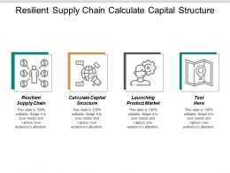 Resilient Supply Chain Calculate Capital Structure Launching Product Market Cpb