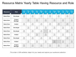 Resource Matrix Yearly Table Having Resource And Role