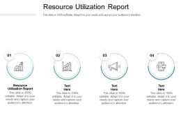 Resource Utilization Report Ppt Powerpoint Presentation Inspiration Example Topics Cpb