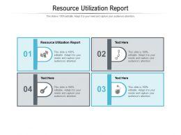 Resource Utilization Report Ppt Powerpoint Presentation Slides Inspiration Cpb