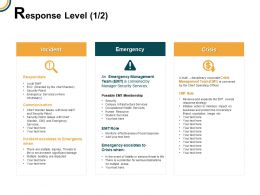 Response Level Incident Crisis Ppt Powerpoint Presentation Icon Tips