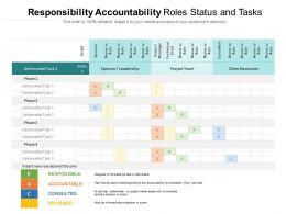 Responsibility Accountability Roles Status And Tasks