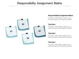 Responsibility Assignment Matrix Ppt Powerpoint Presentation Model Good Cpb