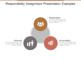 Responsibility Assignment Presentation Examples