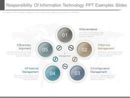 Responsibility Of Information Technology Ppt Examples Slides