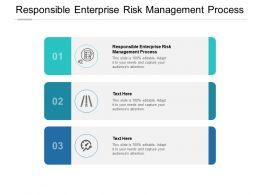 Responsible Enterprise Risk Management Process Ppt Powerpoint Presentation Portfolio Cpb