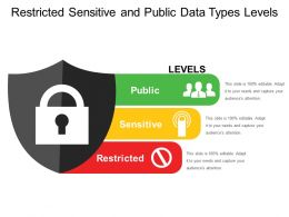 Restricted Sensitive And Public Data Types Levels