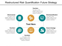 Restructured Risk Quantification Future Strategy Segmentation Market Demand Cpb