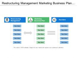 Restructuring Management Marketing Business Plan Target Market Segmentation