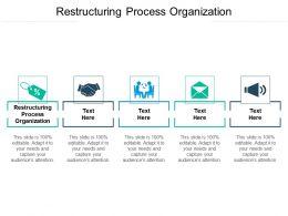 Restructuring Process Organization Ppt Powerpoint Presentation Portfolio Inspiration Cpb