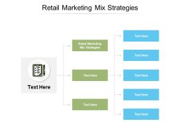 Retail Marketing Mix Strategies Ppt Powerpoint Presentation Gallery Inspiration Cpb