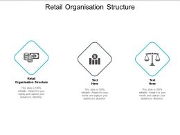 Retail Organisation Structure Ppt Powerpoint Presentation Gallery Visuals Cpb