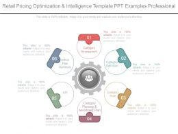 Retail Pricing Optimization And Intelligence Template Ppt Examples Professional