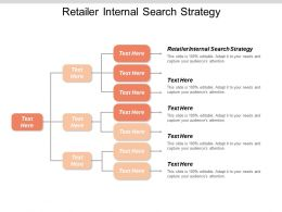 Retailer Internal Search Strategy Ppt Powerpoint Presentation Gallery Vector Cpb