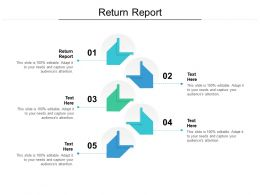 Return Report Ppt Powerpoint Presentation Infographic Template Ideas Cpb