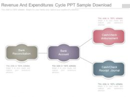Revenue And Expenditures Cycle Ppt Sample Download