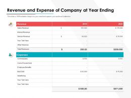 Revenue And Expense Of Company At Year Ending
