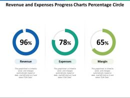 Revenue And Expenses Progress Charts Percentage Circle