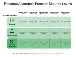 Revenue Assurance Function Maturity Levels