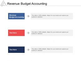 Revenue Budget Accounting Ppt Powerpoint Presentation Icon Picture Cpb