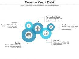 Revenue Credit Debit Ppt Powerpoint Presentation Show Example Introduction Cpb