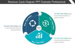 Revenue Cycle Diagram Ppt Example Professional