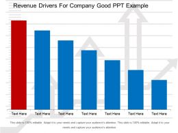 Revenue Drivers For Company Good Ppt Example