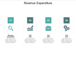 Revenue Expenditure Ppt Powerpoint Presentation Slides Clipart Cpb