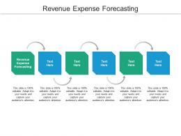 Revenue Expense Forecasting Ppt Powerpoint Presentation Topics Cpb