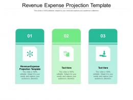 Revenue Expense Projection Template Ppt Powerpoint Presentation Model Diagrams Cpb