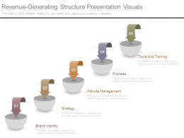 Revenue Generating Structure Presentation Visuals
