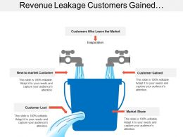 Revenue Leakage Customers Gained Lost Market Share