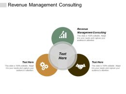 Revenue Management Consulting Ppt Powerpoint Presentation Rules Cpb
