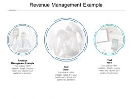 Revenue Management Example Ppt Powerpoint Presentation Summary Slide Download Cpb