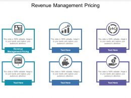 Revenue Management Pricing Ppt Powerpoint Presentation Gallery Samples Cpb