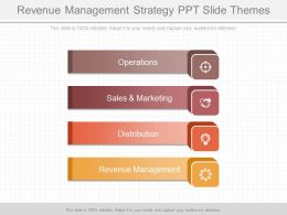 Revenue Management Strategy Ppt Slide Themes