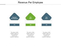 Revenue Per Employee Ppt Powerpoint Presentation Styles Objects Cpb