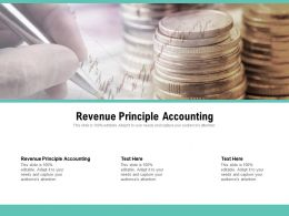 Revenue Principle Accounting Ppt Powerpoint Presentation Professional Designs Cpb