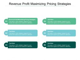 Revenue Profit Maximizing Pricing Strategies Ppt Powerpoint Infographic Design Cpb