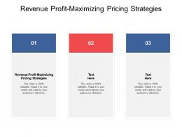 Revenue Profit Maximizing Pricing Strategies Ppt Powerpoint Summary Cpb