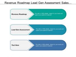 Revenue Roadmap Lead Gen Assessment Sales Management Opportunity