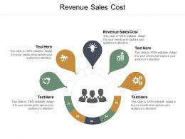 Revenue Sales Cost Ppt Powerpoint Presentation Slides Diagrams Cpb