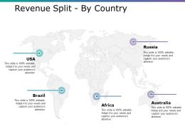 Revenue Split By Country Ppt Infographics Outfit