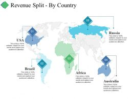 Revenue Split By Country Ppt Summary Good