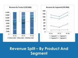Revenue Split By Product And Segment Ppt Icon Aids