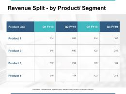 Revenue Split By Product Segment Ppt Powerpoint Presentation Gallery Summary