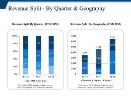 Revenue Split By Quarter And Geography Powerpoint Slide Presentation Tips
