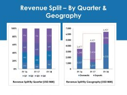 Revenue Split By Quarter And Geography Ppt Gallery Layout Ideas