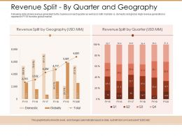 Revenue Split By Quarter And Geography Ppt Powerpoint Presentation Guidelines